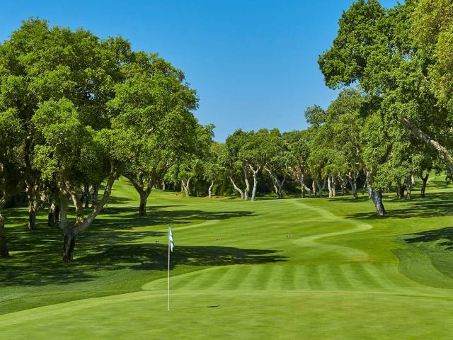 Hole 13 - Real Valderrama Golf Club